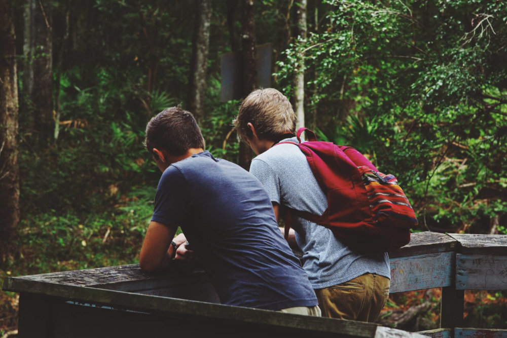Two friends, side by side, facing a forest