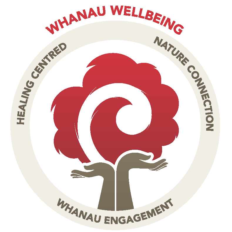 The three pillars of whanau wellbeing in early childhood education.